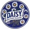 Daisy Flour